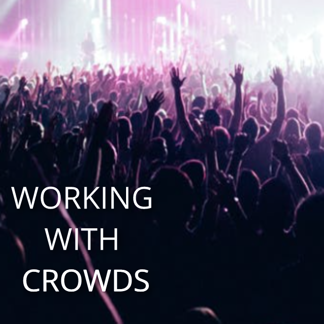 Working With Crowds